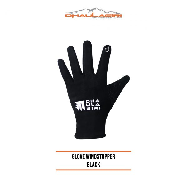 Dh Gloves Windstopper new